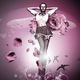 Rosa Rose Arkivbild