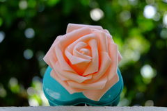 Rosa Rose Green Bokeh Background Stockfoto