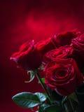 Rosa Rose rosse Mazzo delle rose rosse Parecchie rose sul fondo del granito Giorno di biglietti di S. Valentino, fondo di giorno  Immagini Stock