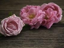 Rosa Rosen auf dem alten Bretterboden lizenzfreies stockfoto