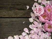 Rosa Rosen auf einem Holztisch stockbilder