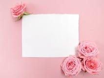 Rosa Rosen auf rosa Hintergrund mit Raum für Text Flache Lage, Draufsicht Stockfoto