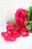 Rosa Rosen in der Vertikale Stockfotos