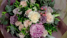 Rosa Rosen (Pfingstrose) im Vase auf weißem hölzernem Hintergrund Blumen stock video footage