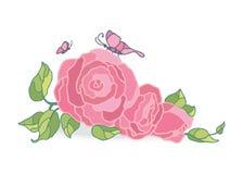 Rosa Rosenvektorillustration auf weißem Feld Stockbild
