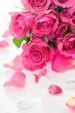 Rosa rosor Fotografering för Bildbyråer