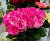 Rosa rosor i en blomsterhandel royaltyfri fotografi