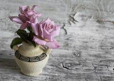 Rosa rosor i en keramisk vas med den grekiska prydnaden Royaltyfria Foton