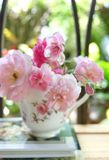 Rosa rosor i kaffekopp Arkivbilder