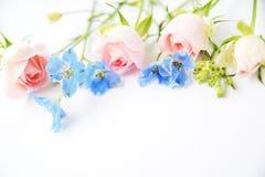 Rosa rosor och blåttblommor Arkivbild
