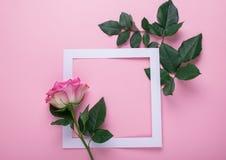 Rosa rosor och en vitbokram dekoreras med nya sidor på en rosa bakgrund Plan orientering Celebratory begrepp royaltyfri fotografi