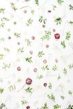 Rosa rosor och gräsplansidor på vit bakgrund Royaltyfria Foton