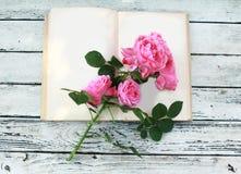 Rosa rosor på den öppna boken Arkivbilder