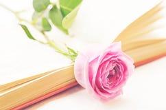 Rosa rosor på en bok Royaltyfri Bild