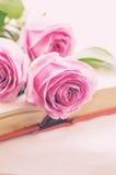 Rosa rosor på en bok Arkivfoton