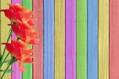 Rosa rosor på målad färgträtexturnärbild Arkivfoton