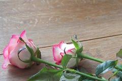 Rosa rosor på träbräde Royaltyfri Bild