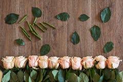 Rosa rosor som ligger på träbakgrund Bakgrund för vårteman Arkivfoton