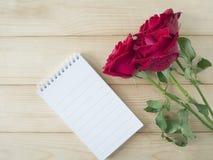 Rosa rossa 41 Immagini Stock