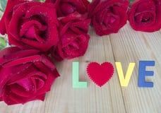 Rosa rossa 23 Immagini Stock