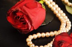 Rosa rossa con il filo delle perle Immagine Stock Libera da Diritti