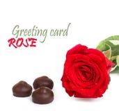 Rosa rossa con le foglie verdi ed il cioccolato, isolati Immagine Stock Libera da Diritti