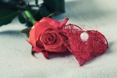 Rosa rossa con un cuore rosso una perla Fotografie Stock Libere da Diritti