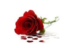 Rosa rossa del biglietto di S. Valentino Fotografie Stock Libere da Diritti