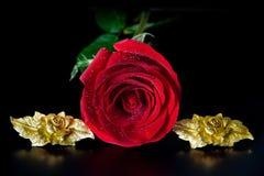 Rosa rossa e rose dorate Fotografia Stock Libera da Diritti