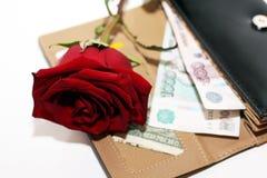 Rosa rossa e soldi Immagini Stock