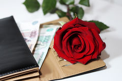 Rosa rossa e soldi Fotografie Stock