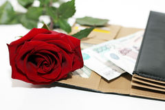 Rosa rossa e soldi Fotografia Stock