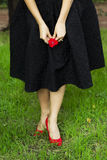 Rosa rossa e tacco alto Immagini Stock