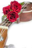 Rosa rossa e ukulele immagine stock