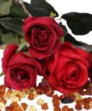 Rosa rossa isolata e jem Fotografia Stock Libera da Diritti