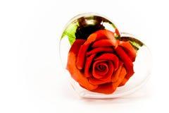 Rosa rossa nel cuore trasparente di vetro fotografia stock