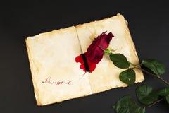 Rosa rossa nello stile di vecchio taccuino Immagini Stock