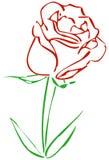 Rosa rossa semplice Immagini Stock Libere da Diritti