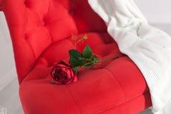 Rosa rossa su una sedia Fotografie Stock Libere da Diritti