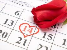Rosa rossa sul calendario Immagini Stock