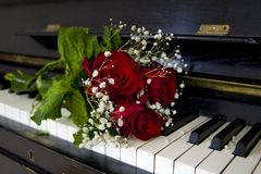 Rosa rossa sul piano - cartolina d'auguri Fotografie Stock