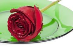 Rosa rossa sulla lastra di vetro verde Fotografie Stock Libere da Diritti