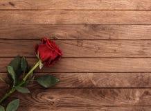 Rosa rossa sulla tavola Fotografie Stock Libere da Diritti
