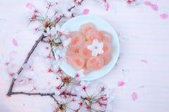 Rosa sötsaker: Cherry Blossom Spring Picnic Arkivbild
