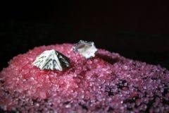 Rosa salt för hav spritt på tabellen med ett skal Royaltyfri Bild