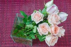 Rosa & San Valentino Immagini Stock Libere da Diritti