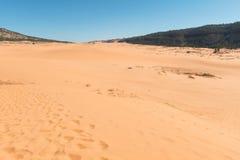 rosa sand för koralldyner fotografering för bildbyråer