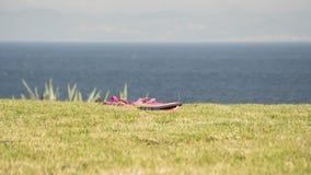 Rosa Sandalen über Gras lizenzfreie stockbilder