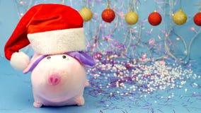 Rosa Schwein angefülltes Spielzeug in einem roten Santa Claus-Hut auf einem blauen Hintergrund, in den neu-jährigen mehrfarbigen  stock video