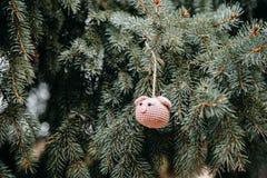 Rosa Schweinkopf der Häkelarbeit auf dem Weihnachtsbaum lizenzfreie stockfotografie